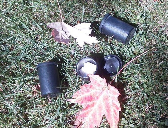 film-canisters-cotton-balls-deer-scents